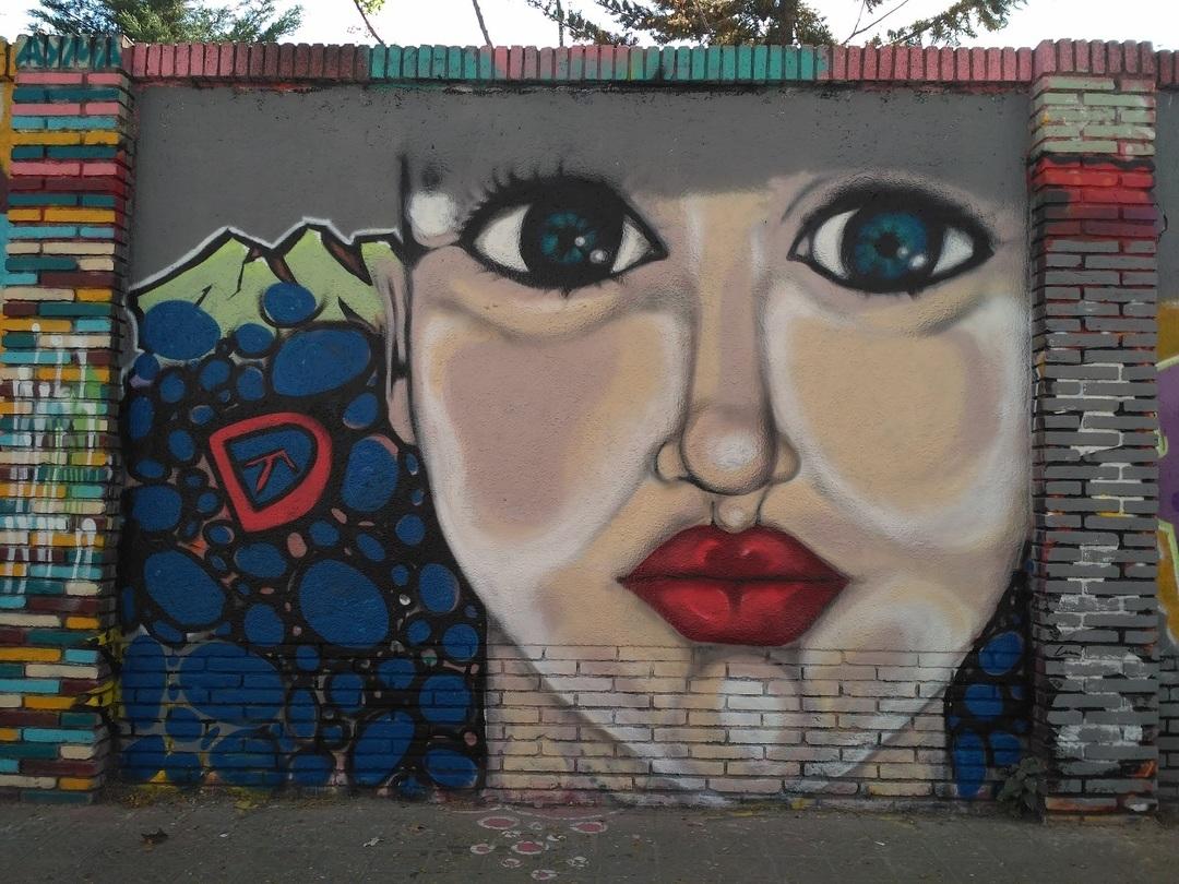 Wallspot - evalop - evalop - Project 20/03/2017 - Barcelona - Selva de Mar - Graffity - Legal Walls - Il·lustració - Artist - DALA @daliladuartedrd