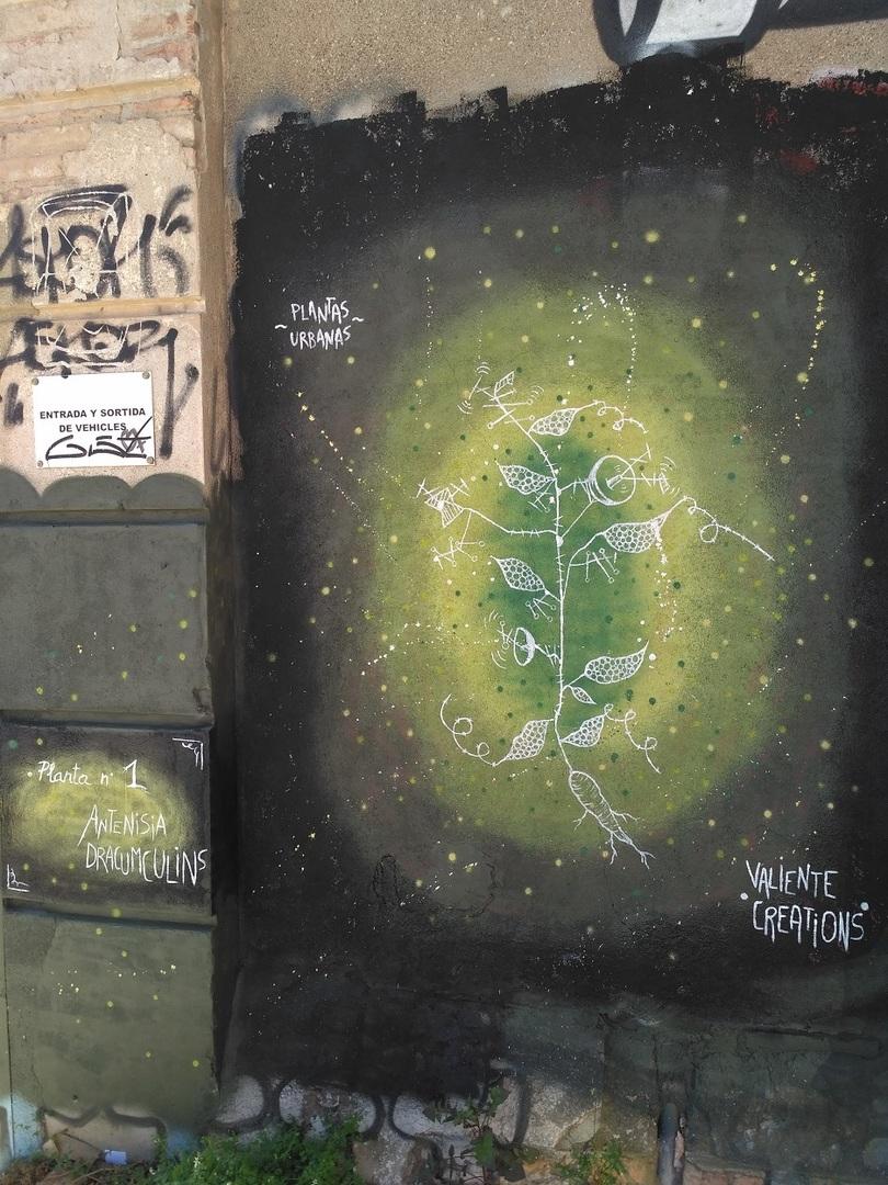Wallspot - evalop - Plantas urbanas - Barcelona - Selva de Mar - Graffity - Legal Walls - Illustration - Artist - Valiente Creations