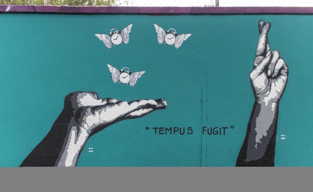 Wallspot - cbs350 - Oymo - Barcelona - Agricultura - Graffity - Legal Walls - Illustration