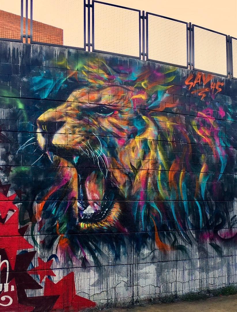 Wallspot - savf - Drassanes - sav45 - Barcelona - Drassanes - Graffity - Legal Walls - Illustration, Others