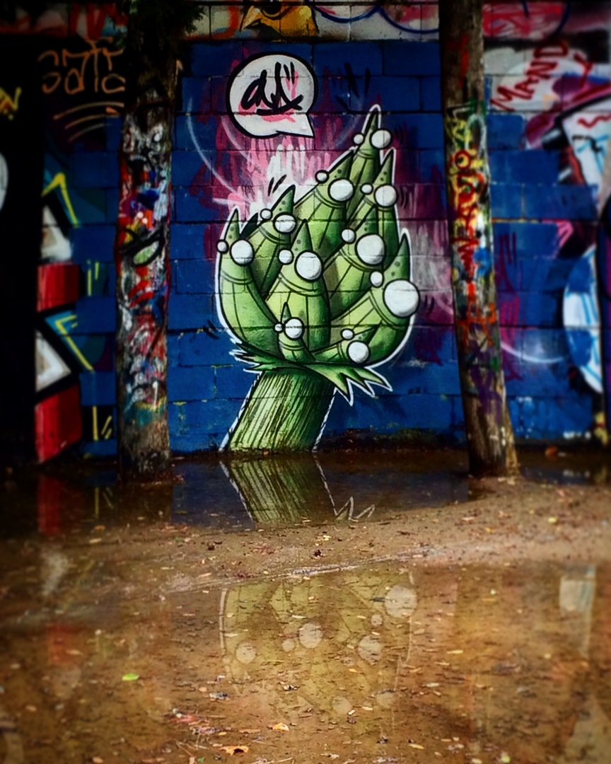 Wallspot - ONA - Drassanes - ONA - Barcelona - Drassanes - Graffity - Legal Walls - Lletres, Il·lustració, Altres