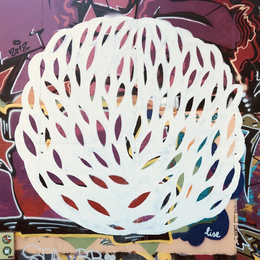 "Wallspot - elisenda_sn - Mas Guinardó : ""formes orgàniques"" - Barcelona - Mas Guinardó - Graffity - Legal Walls - ,"