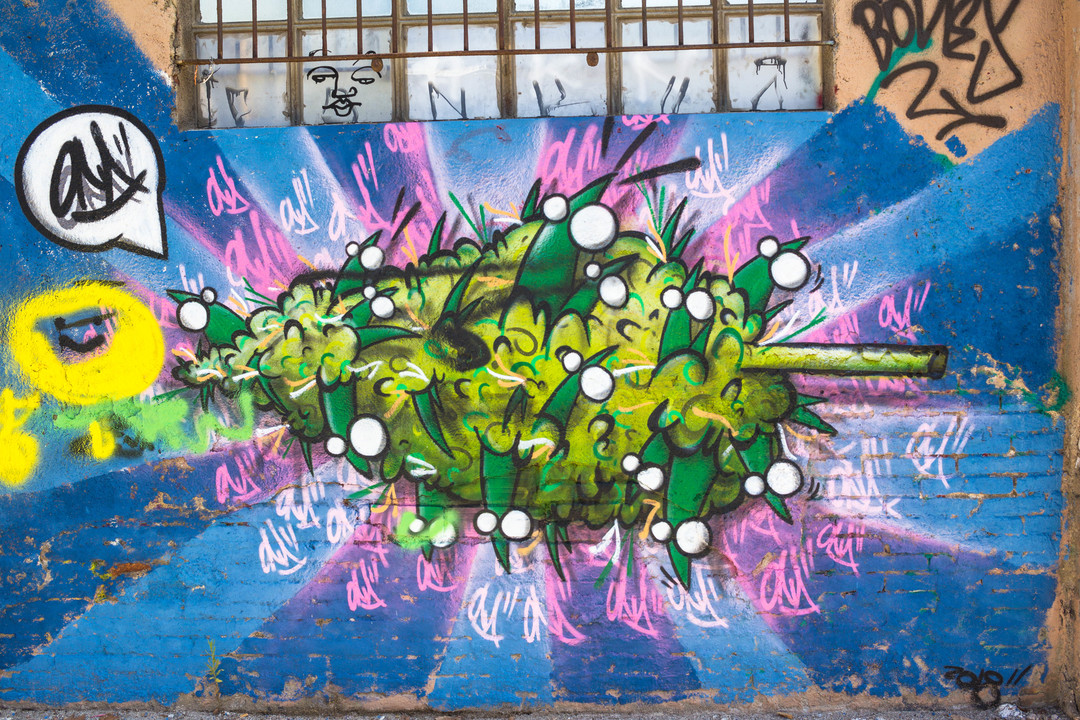 Wallspot - JOAN PIÑOL - ONA - Barcelona - Selva de Mar - Graffity - Legal Walls -  - Artist - ONA
