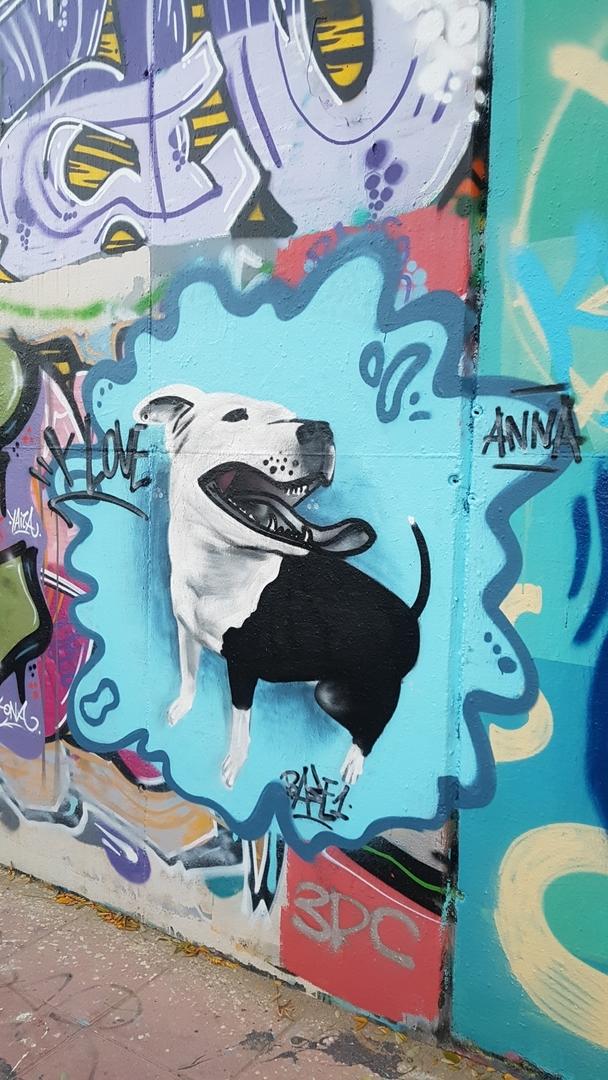 Wallspot - mark -  - Barcelona - Mas Guinardó - Graffity - Legal Walls -