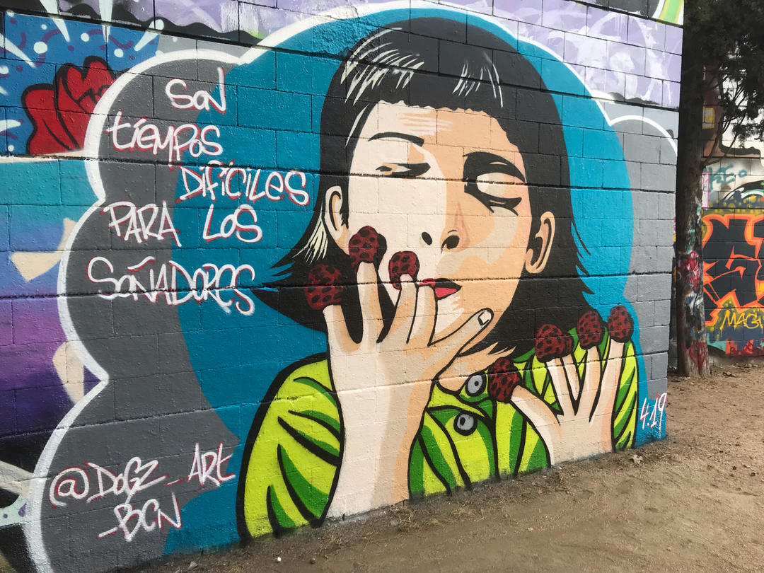 Wallspot - Dogz - Drassanes - Barcelona - Drassanes - Graffity - Legal Walls -