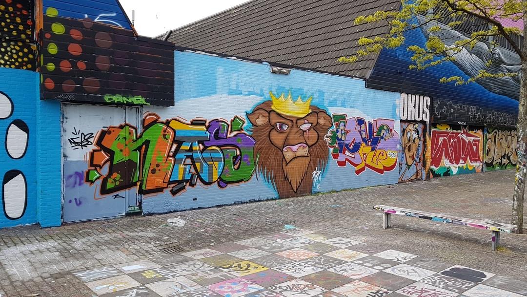 Wallspot - TopCat Design -  - Rotterdam - Croos - Graffity - Legal Walls -