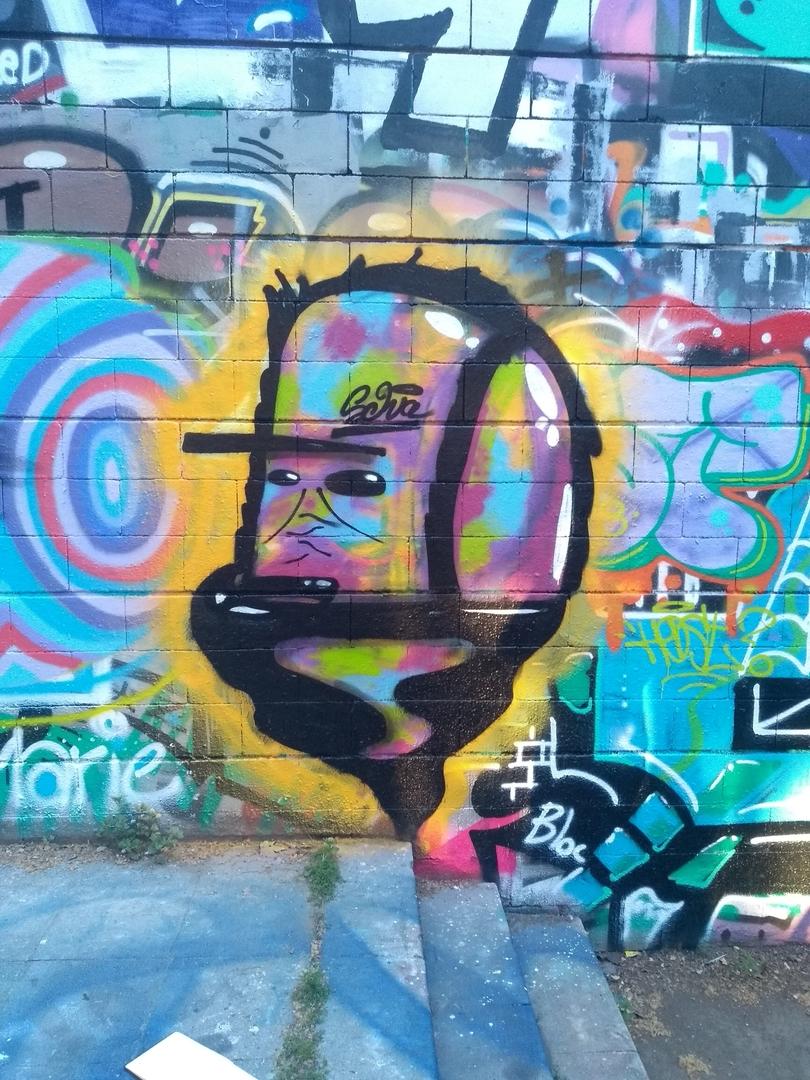 Wallspot - selva - Snu Dog - Barcelona - Drassanes - Graffity - Legal Walls - Illustration