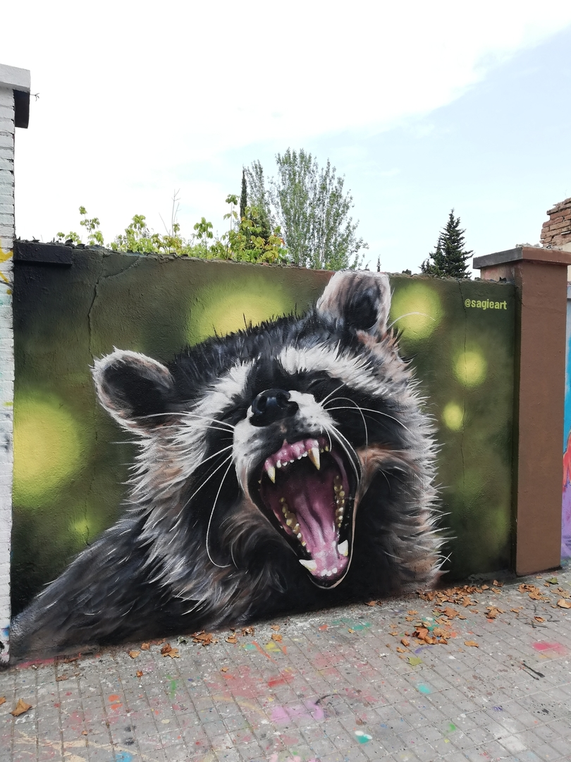 Wallspot - sagie - raccoon dog - Barcelona - Agricultura - Graffity - Legal Walls - Ilustración, Otros