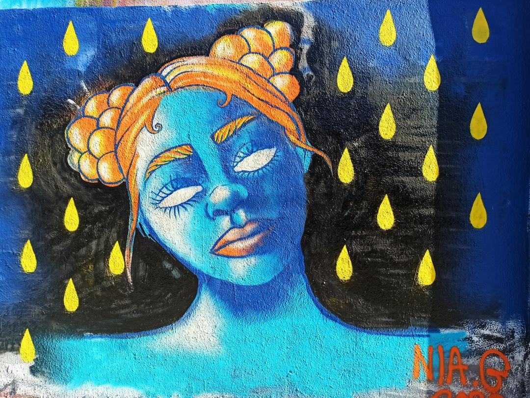 Wallspot - evalop - evalop - Project 06/02/2020 - Barcelona - Agricultura - Graffity - Legal Walls - Illustration - Artist - nia.genestar.art