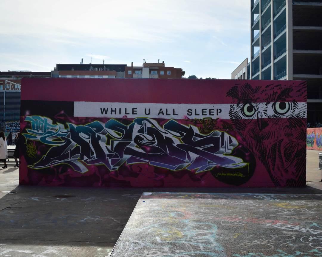 Wallspot - Splatrs - While you all sleep.... - Barcelona - Tres Xemeneies - Graffity - Legal Walls - Letters, Illustration - Artist - owlschoolcrew