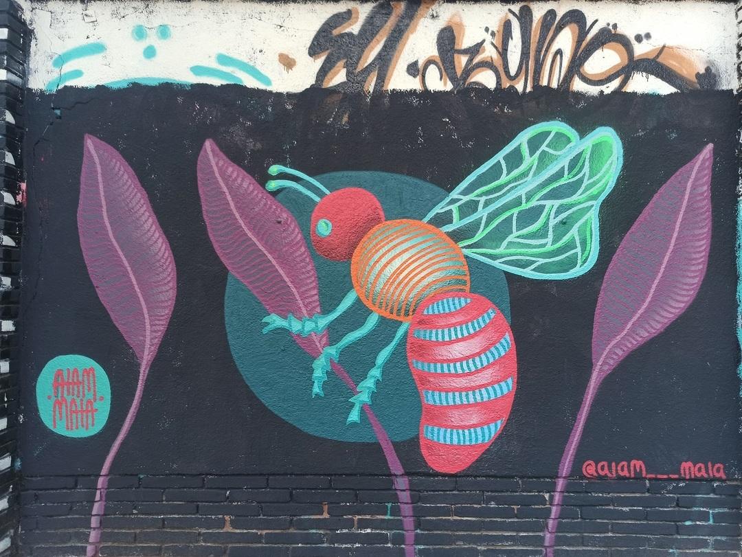 Wallspot - evalop - evalop - Project 20/06/2020 - Barcelona - Selva de Mar - Graffity - Legal Walls - Illustration - Artist - aiam maia