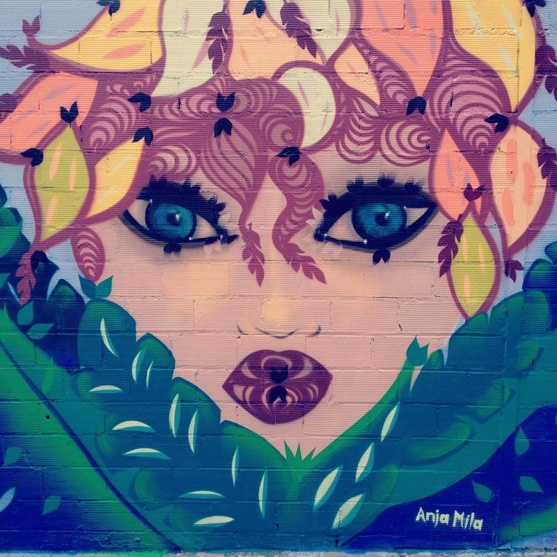 Wallspot - Anja Mila - Maria Reverter / Passatge Cooperativa - Anja Mila - Barberà del Vallès - Maria Reverter / Nemesi Valls - Graffity - Legal Walls - Illustration