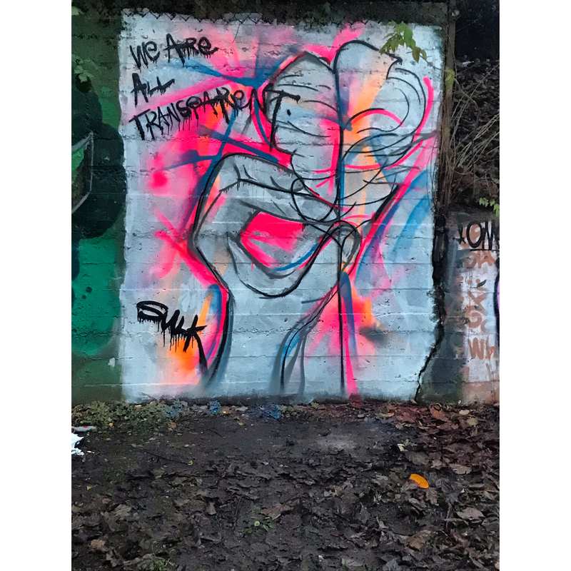 Wallspot - Sulk - Sunnybank Park / Throwupgallery - Aberdeen - Sunnybank Park / Throwupgallery - Graffity - Legal Walls - Others
