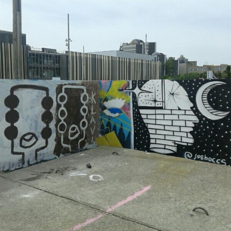 Wallspot - Janomada - Barcelona - Parc de la Bederrida - Graffity - Legal Walls -