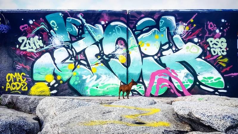 Wallspot - Zoia - Forum beach - Zoia - Barcelona - Forum beach - Graffity - Legal Walls -
