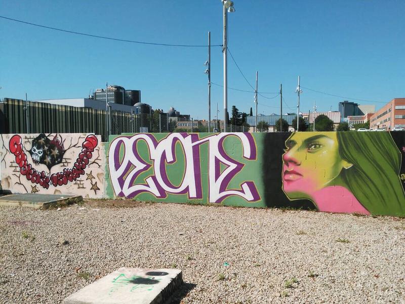 Wallspot - peone1 - RUIDO-PEONE-ANTARES - Barcelona - Parc de la Bederrida - Graffity - Legal Walls - ,
