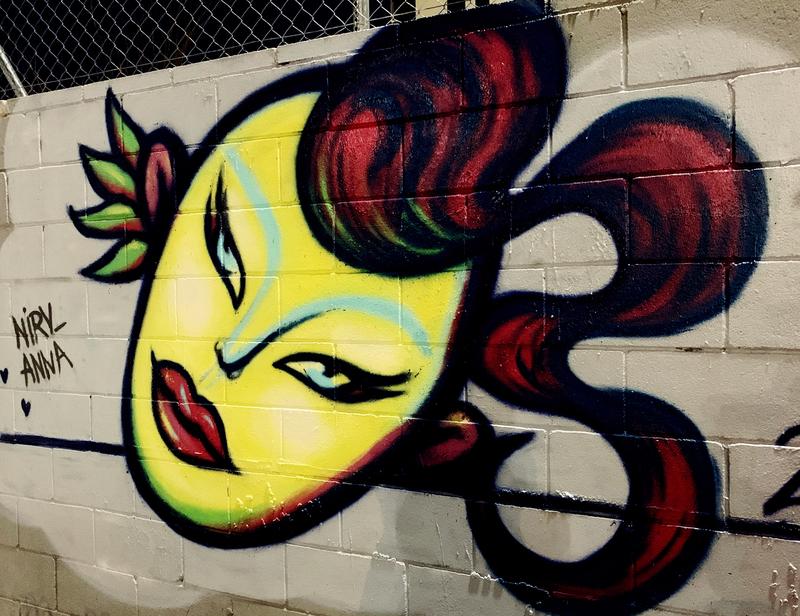 Wallspot - nirv_anna - Barcelona - Parc de la Bederrida - Graffity - Legal Walls -