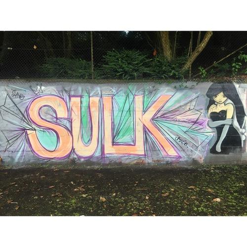 Sunnybank Park / Throwupgallery - Sulk