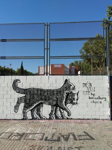 Wallspot - Boo Wilbury -  - Barcelona - Drassanes - Graffity - Legal Walls -